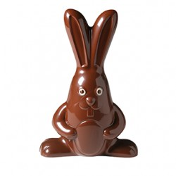 Moule pour chocolat grand lapin Barry