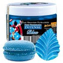 Colorant intense bleu (50gr) Déco Relief