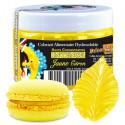 Colorant intense jaune citron (50gr) Déco Relief